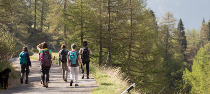 2 NEW 2017 'Mindfulness in nature' holidays in Austria