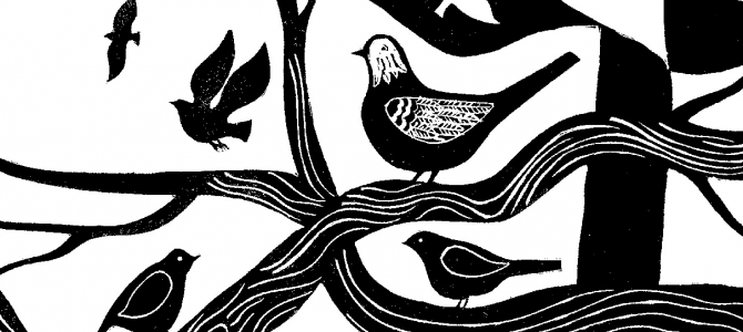 NEW BOOK RELEASED: The Art of Mindful Birdwatching